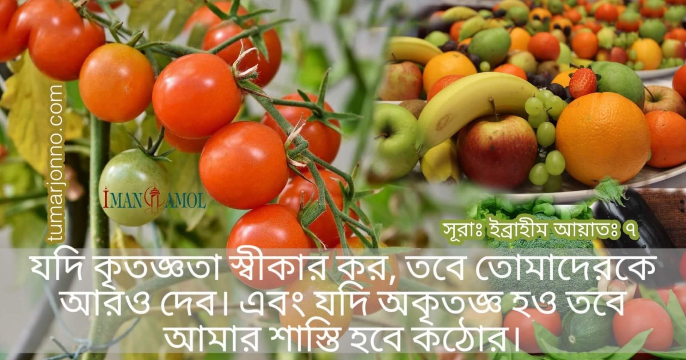 Sura Ibrahim Ayat 7